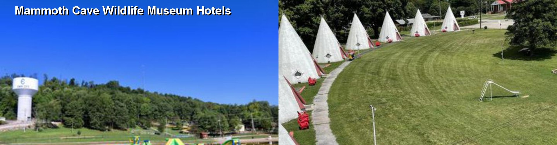 5 Best Hotels near Mammoth Cave Wildlife Museum