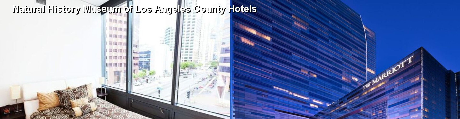 5 Best Hotels near Natural History Museum of Los Angeles County