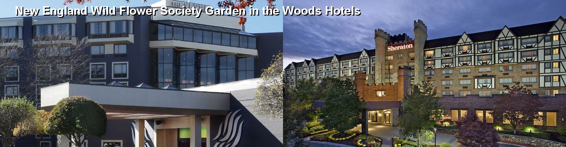 5 Best Hotels near New England Wild Flower Society Garden in the Woods