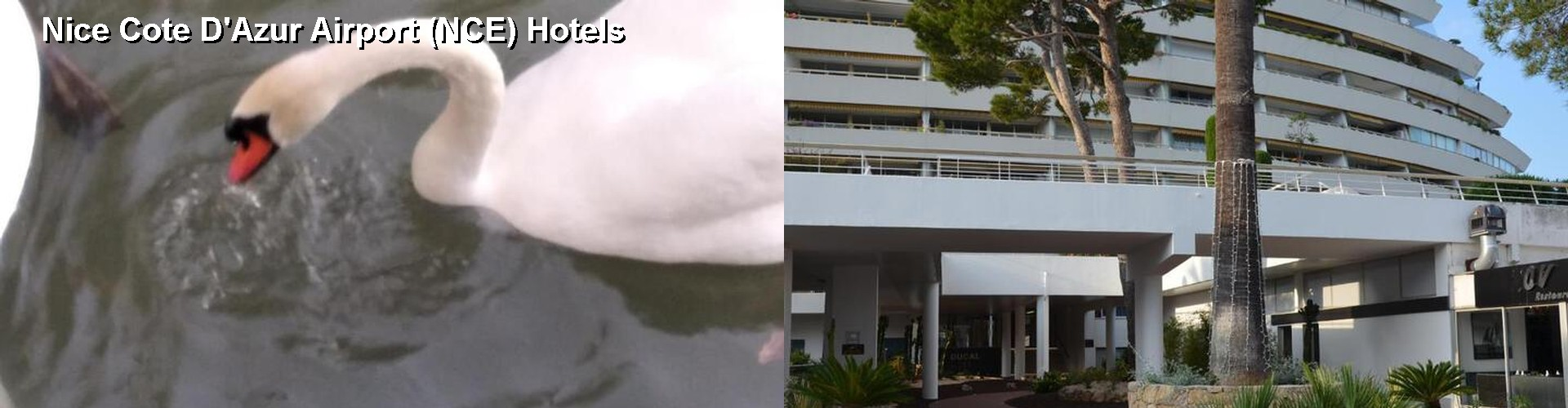 5 Best Hotels near Nice Cote D'Azur Airport (NCE)