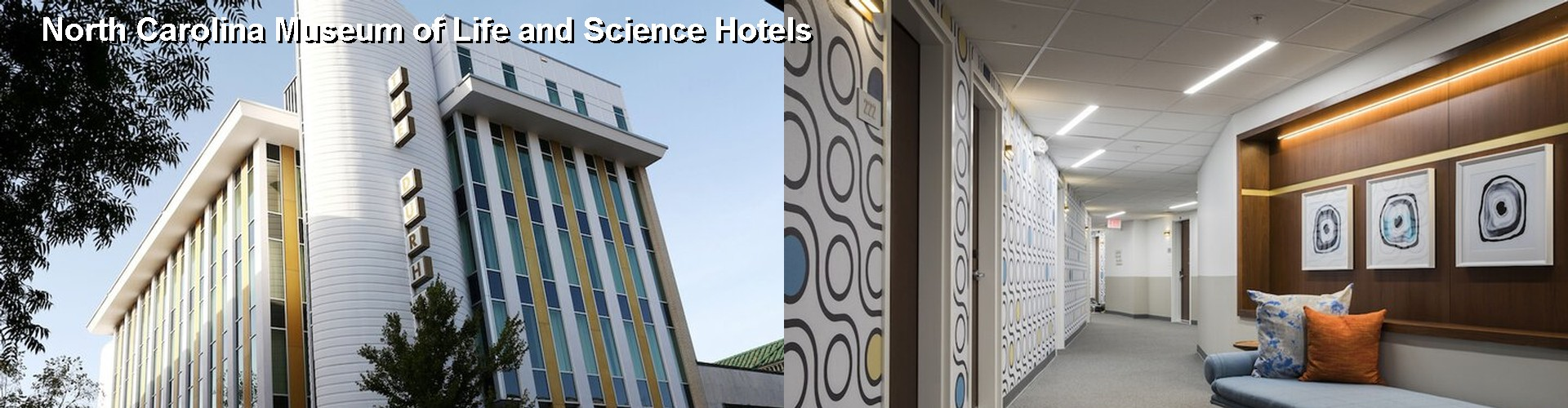 5 Best Hotels near North Carolina Museum of Life and Science
