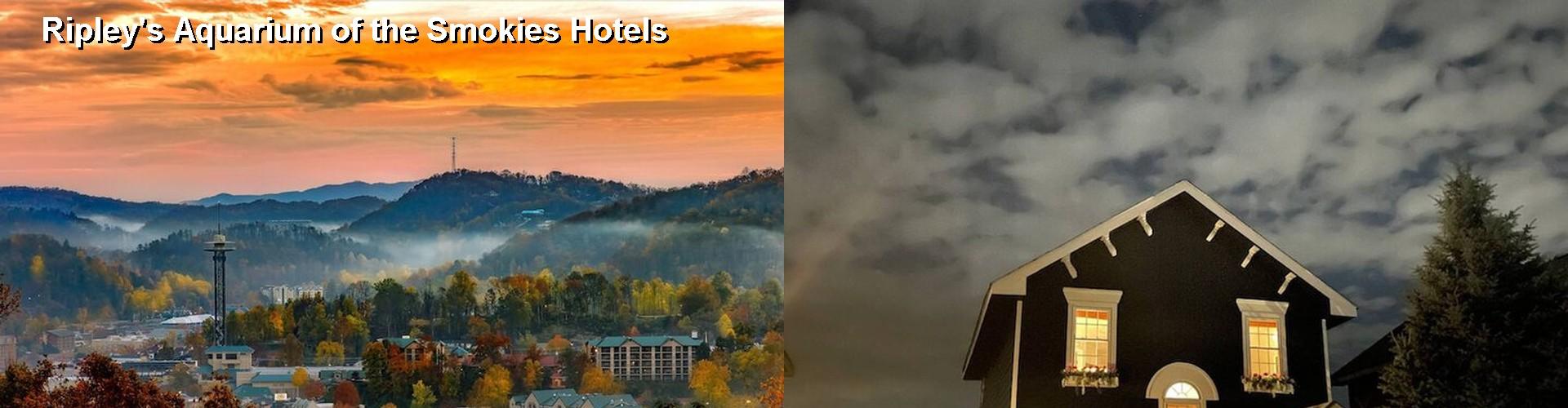 Motels In Cosby Tn