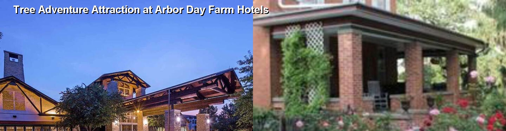 4 Best Hotels near Tree Adventure Attraction at Arbor Day Farm
