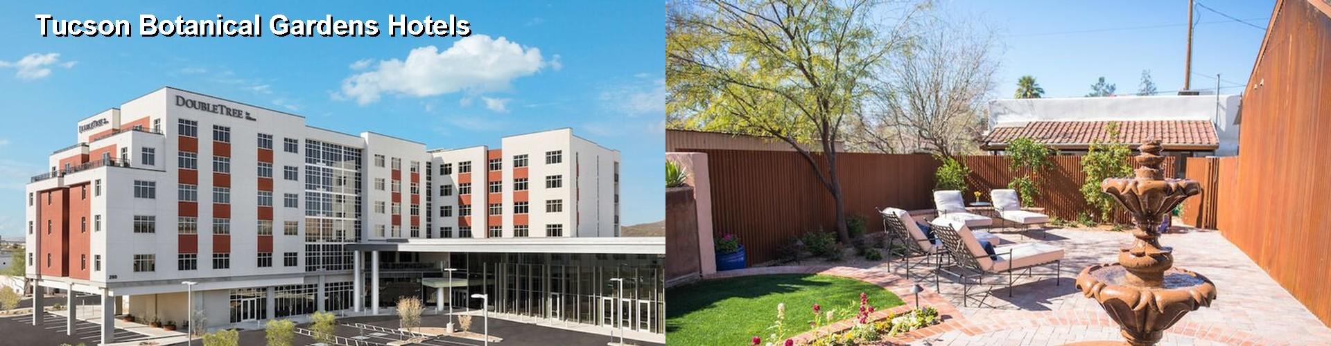 5 Best Hotels Near Tucson Botanical Gardens
