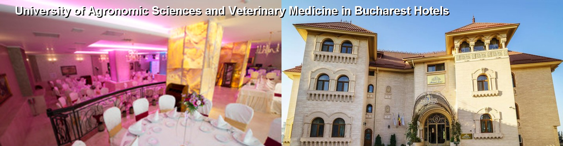 5 Best Hotels near University of Agronomic Sciences and Veterinary Medicine in Bucharest