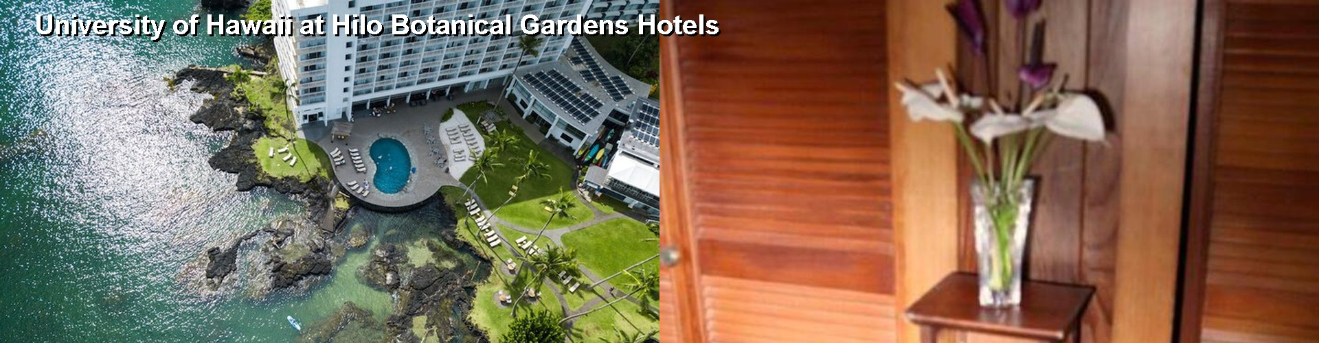 4 Best Hotels Near University Of Hawaii At Hilo Botanical Gardens