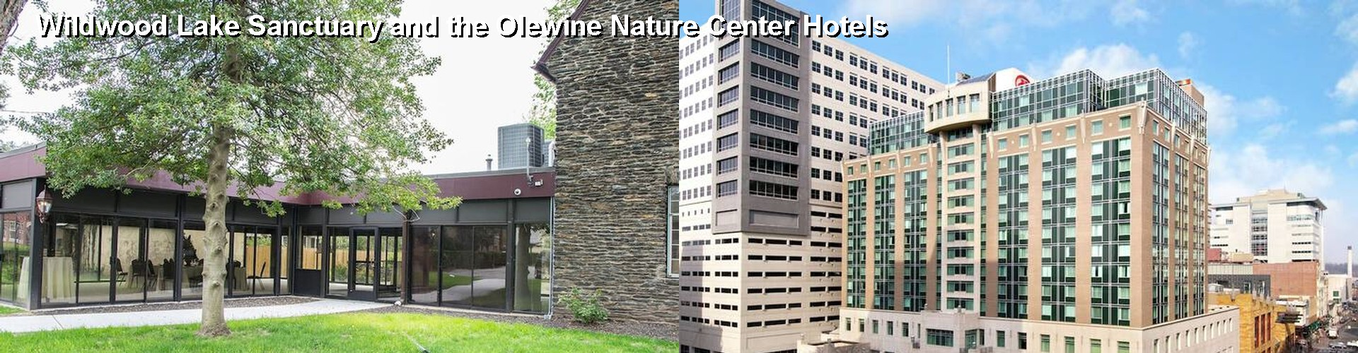 5 Best Hotels near Wildwood Lake Sanctuary and the Olewine Nature Center