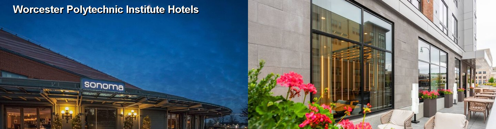 5 Best Hotels near Worcester Polytechnic Institute