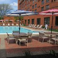 Pool image of Albany Marriott