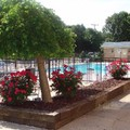 Pool image of American Inn North Kansas City Mo