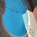 Photo of Americas Best Value Inn Brownsville / Padre Island Hwy Pool