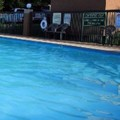 Pool image of Americas Best Value Inn Goodlettsville / N. Nashville