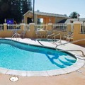 Pool image of Americas Best Value Inn & Suites Healdsburg