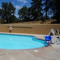 Pool image of Americas Best Value Inn Yosemite South Gate
