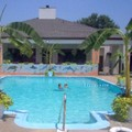Pool image of Baymont Inn & Suites Prince George at Fort Lee