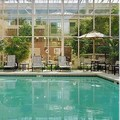Pool image of Belle of Baton Rouge Casino & Hotel
