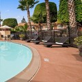 Swimming pool at Best Western Americana Inn
