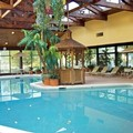 Swimming pool at Best Western Braddock Inn