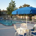 Swimming pool at Best Western Falls Church / Arlington Area