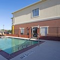 Pool image of Best Western Littlefield Inn & Suites