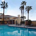 Photo of Best Western Palm Court Inn Pool