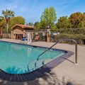Swimming pool at Best Western Plus Daphne Inn & Suites