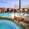 Swimming pool at Best Western Plus Dfw Airport West Euless