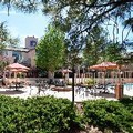 Pool image of Best Western Plus Inn of Williams