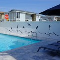 Pool image of Best Western Plus Newport Beach Inn