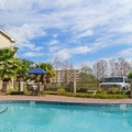 Pool image of Best Western Plus Tallahassee North Hotel