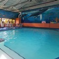 Swimming pool at Best Western Plus Virginia Beach