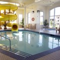 Pool image of Best Western Rocky Mountain House Inn & Suites