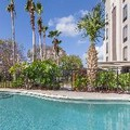 Pool image of Best Western Southside Hotel & Suites