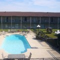 Swimming pool at Best Western Trail Dust Inn & Suites