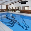 Pool image of Best Western by Mammoth Hot Springs