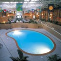 Pool image of Best Western of Alexandria Inn & Suites & Conference Center
