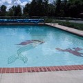 Photo of Budget Host Alpine Motor Lodge Pool
