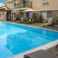Pool image of Comfort Inn Cockatoo