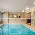 Pool image of Comfort Inn Halifax