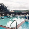 Pool image of Comfort Inn Marrero New Orleans West