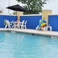 Pool image of Comfort Inn Oak Ridge Knoxville