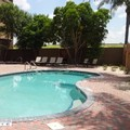 Swimming pool at Comfort Inn & Suites Pharr / Mcallen Open Aug 2015