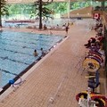 Pool image of Comfort Inn Surrey Hotel