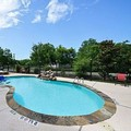 Pool image of Comfort Suites