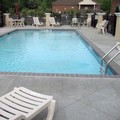 Pool image of Comfort Suites Olive Branch