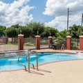 Pool image of Comfort Suites Westchase