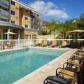 Swimming pool at Courtyard by Marriott Tampa / Oldsmar