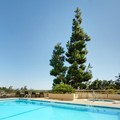 Image of Crowne Plaza San Jose Silicon Valley