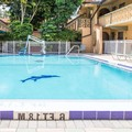 Pool image of Days Inn Altamonte Springs
