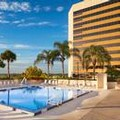 Pool image of Doubletree by Hilton Orlando Downtown